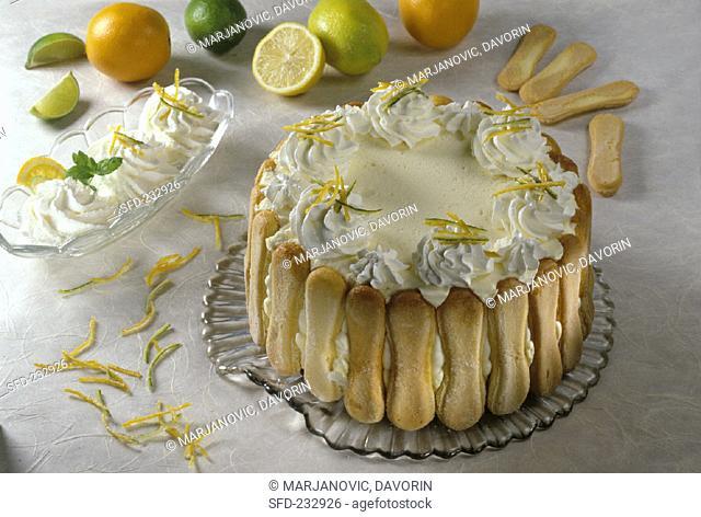 Sponge finger gateau with cream and citrus fruits