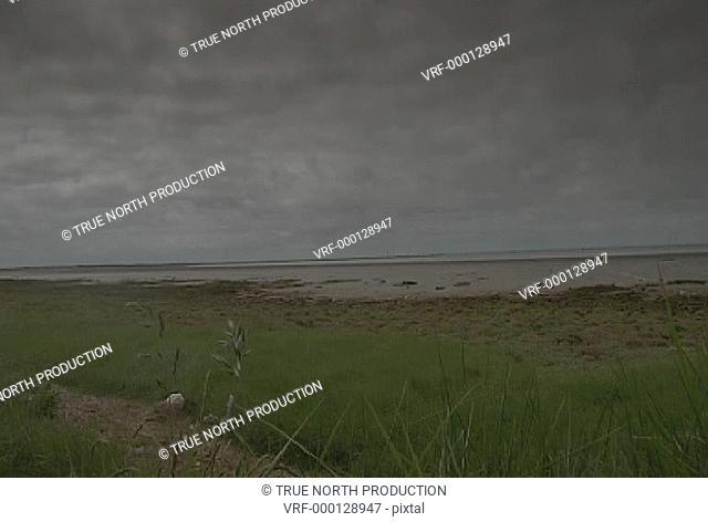 GV, MS, scrub, dune, overcast, desolate. Spurn Point, UK