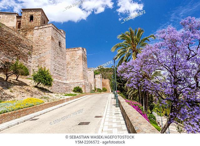 Alcazaba Fortress, Málaga, Costa del Sol, Andalusia, Spain, Europe