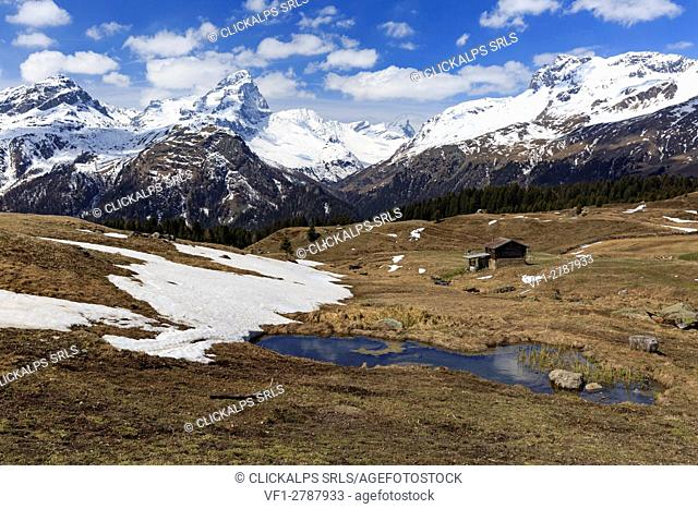 The beautiful bog land enviroment of Alp Flix, during the first period of spring, with Piz Platta in the background, Sur, Grisons, Switzerland