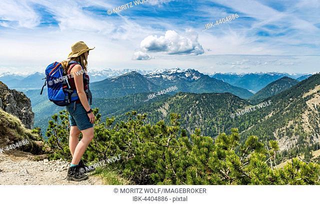 Hiker looking towards foothills, Herzogstand Heimgarten ridge walk, Upper Bavaria, Bavaria, Germany
