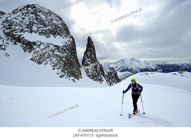 Female back-country skier ascending to Cima Cece, Lagorai, Fiemme Mountains, Trention, Italy