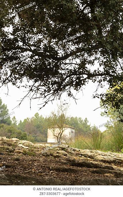 La Mearrera. Almansa. Albacete province, Castile-La Mancha, Spain