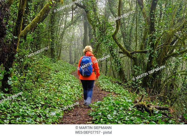 Spain, Canary Islands, La Gomera, woman hiking through cloud forest at Garajonay National Park
