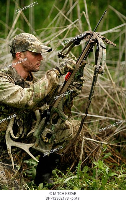 Whitetail Deer Hunter With Crossbow