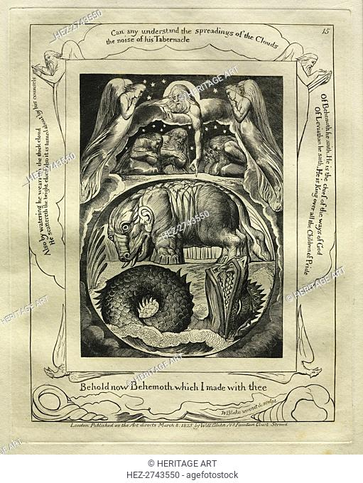 The Book of Job: Pl. 15, Behold now Behemoth which I made with thee, 1825. Creator: William Blake (British, 1757-1827)