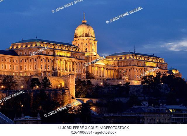 Royal Palace, Budapest  Hungary, Europe