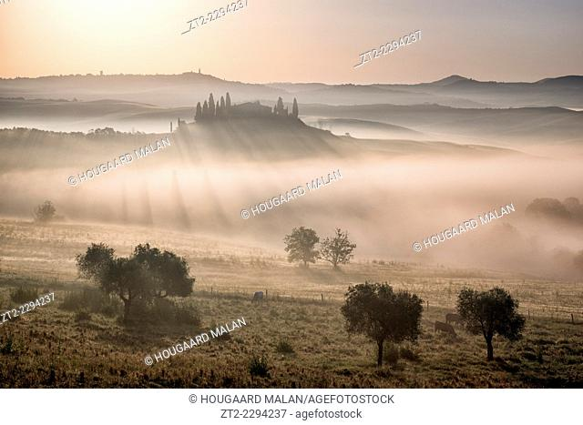 Landscape photo of a misty morning in the farmlands of Tuscany. Val D'Orcia, Tuscany, Italy