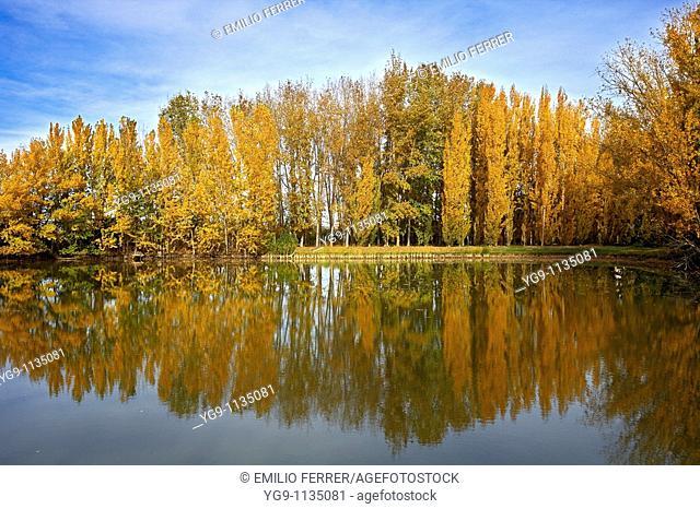 Autumn in LLeida, Spain