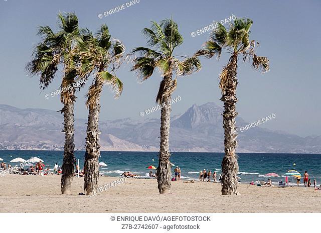 View of the San Juan beach in Alicante, Spain