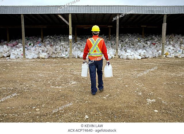 Worker sorting containers at pesticide recycling depot, Mountain View County, Alberta, Canada