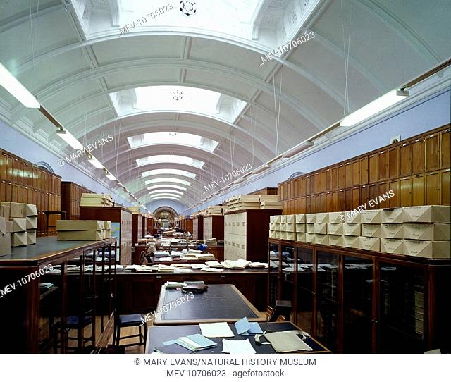 View looking east along the present day herbarium in the Botany Department at the Natural History Museum, London. Photographed in 1970
