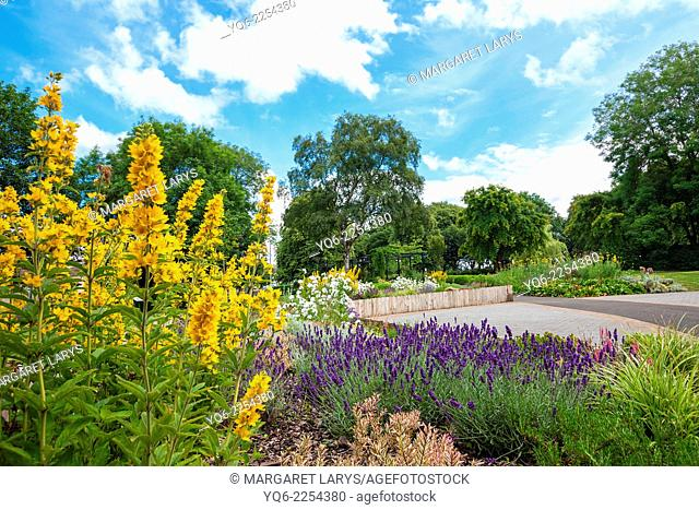 Blooming colorful flowerbeds in summer park in Airdrie, North Lanarkshire, Scotland