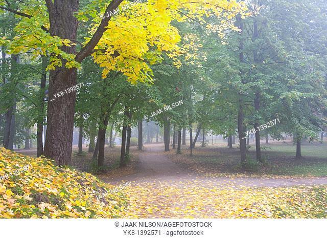 Fall Colours in Dome Hill Park, Tartu, Estonia