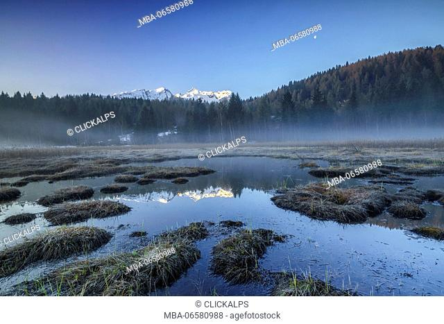 Orobie Alps are reflected in the peat bog of Pian di Gembro, Aprica, Valcamonica, Valtellina, Lombardy, Italy, Europe