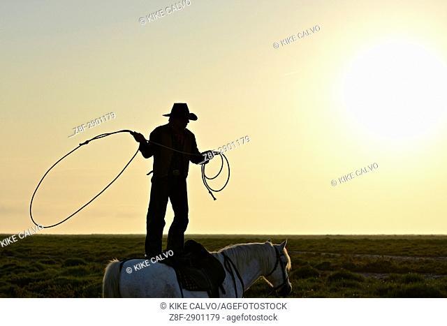 Gardian lassoing standing on a camargue horse