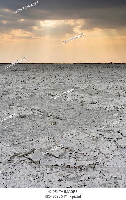 A storm approaching the salt pan, Nxai Pan, Botswana , Africa