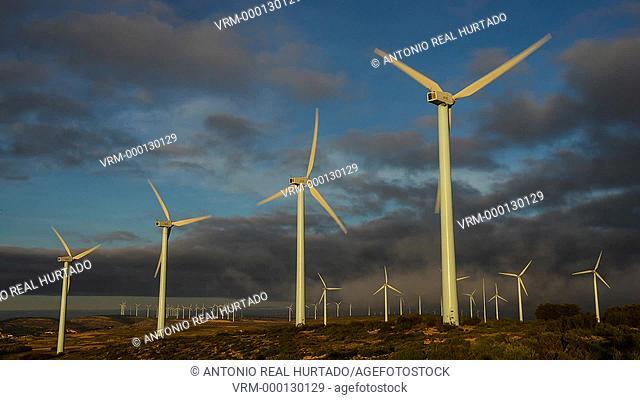 Wind installation. Higueruela. Albacete province. Spain