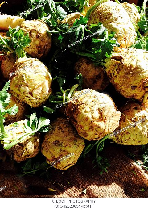 Celery root at a farmers market in the sun