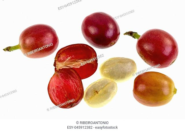 View of a fresh coffee cherry fruit anatomy with the outer section composed by the skin and pulp, in red in the image, and the inner section or seed with two...