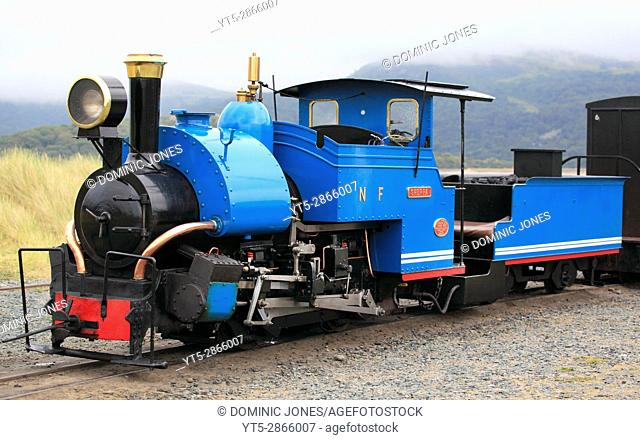 'Sherpa' a 0-4-0 saddletank engine idles at Penrhyn Point on the Fairbourne Railway, Fairbourne, Wales, Europe. . Fairbourne Railway, Fairbourne, Wales, Europe