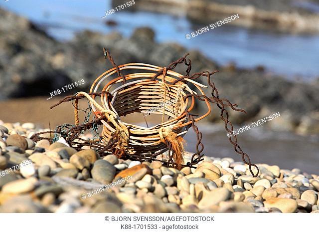 Remnants of an old Crayfish pot  Tarkine Coast, North West Tasmania, Australia