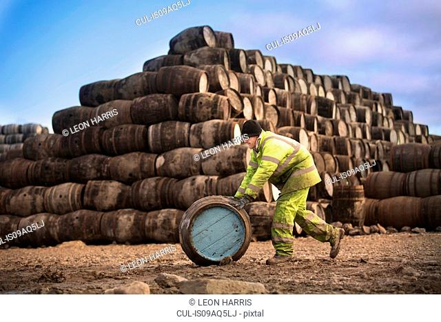 Young man rolling whisky cask at cooperage