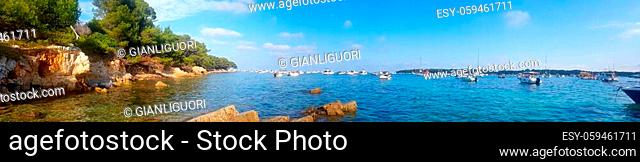 Boats and landscape in the Sainte Marguerite island, Lerins islands, South of France