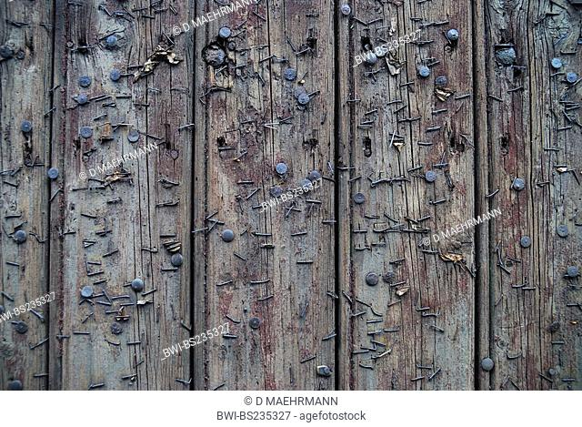 wooden door with rusty pushpins and staples