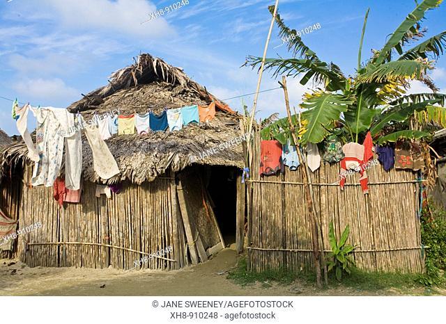 Thatched houses, Isla Tigre, San Blas Islands, Kuna Yala, Panama
