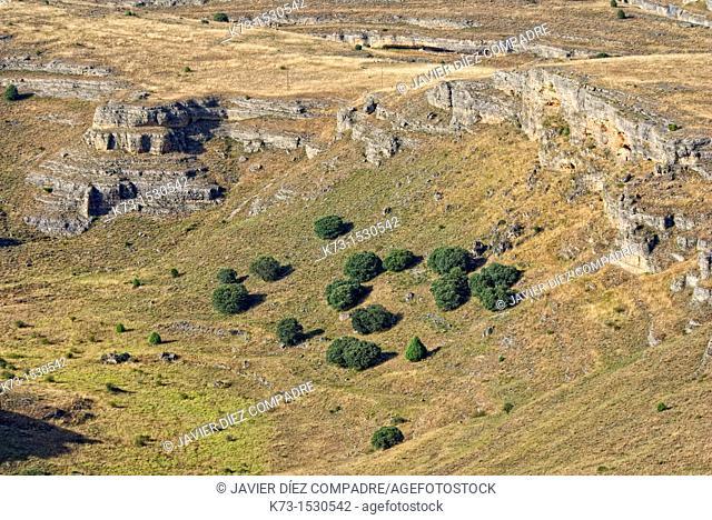 Hoces del Duraton Natural Park. Sepúlveda. Segovia Province. Castilla y Leon. Spain