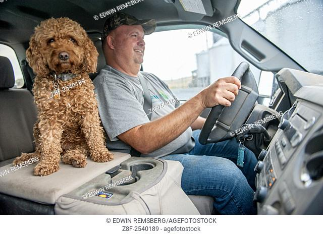 Farmer in the cab of his truck with his pet dog sitting next to him in Dalmatia, Pennsylvania, USA
