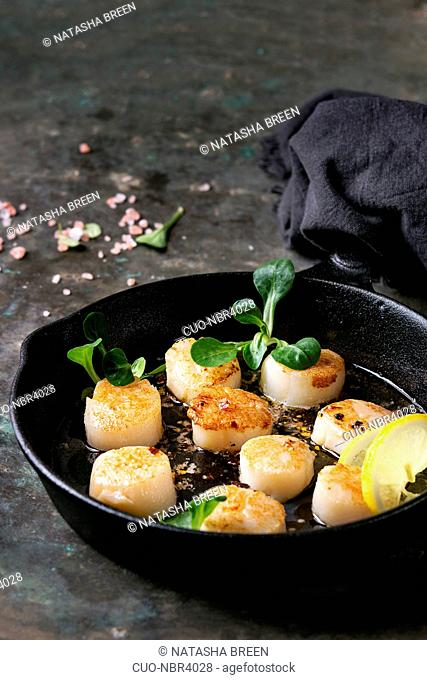 Fried scallops with butter lemon spicy sauce in cast-iron pan served with green salad and textile napkin over old dark metal background