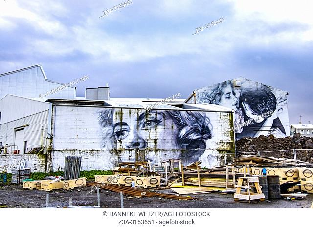 Mural by Guideo Van Helten in Reykjavik, Iceland. The renowned Australian artist based these spectacular works on snap-shots by Andrés Kolbeinsson