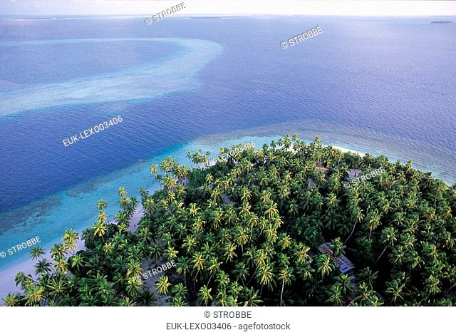 the Maldives Indian Ocean