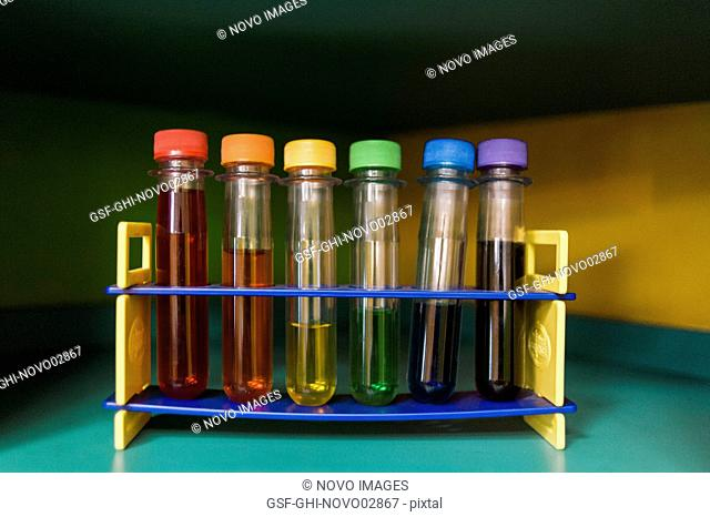 Row of Test Tubes with Assorted Colorful Liquid
