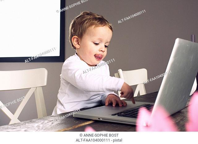 Little boy using laptop computer