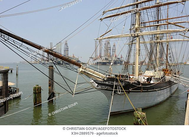 tall ship Elissa (1877), a three-masted barque moored in the port of Galveston, Galveston island, Gulf of Mexico, Texas, United States of America, North America