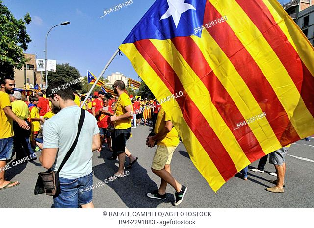 Political demonstration for the independence of Catalonia, September 11 2014, Barcelona, Catalonia, Spain