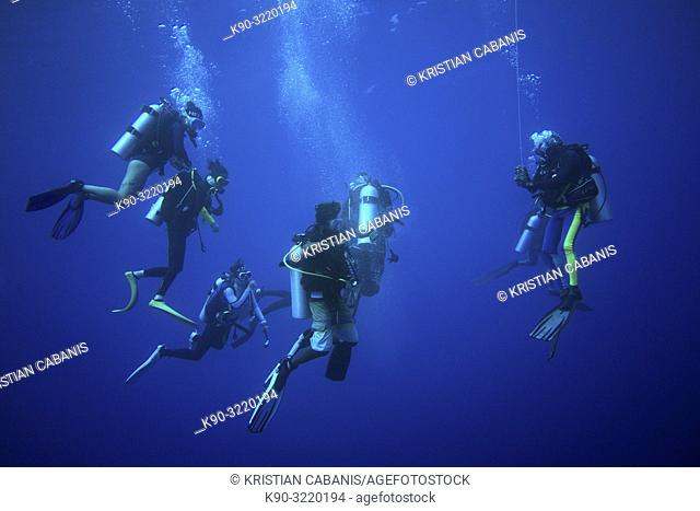 Group of diver making the safety stop just under the surface