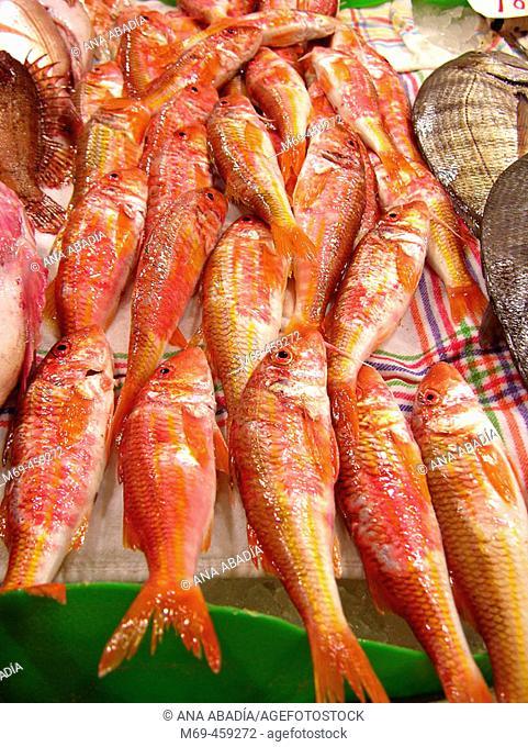 Red mullets for sale at El Olivar market, Palma de Mallorca. Majorca, Balearic Islands, Spain