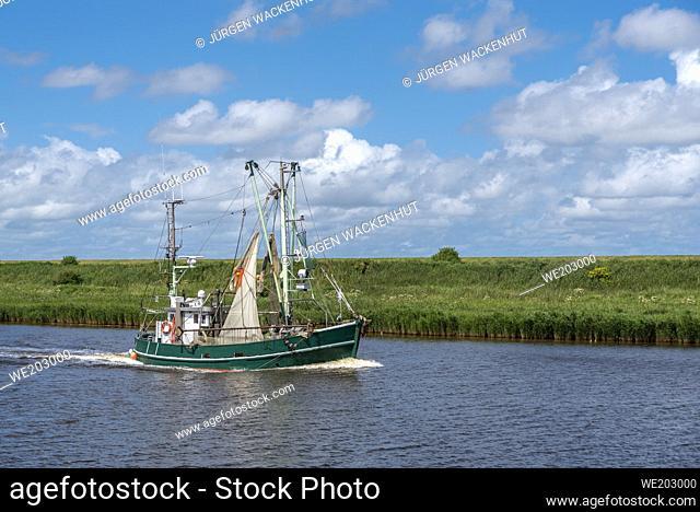Shrimp boat in the Leyhoerner-Sieltief, Greetsiel, Lower Saxony, Germany, Europe