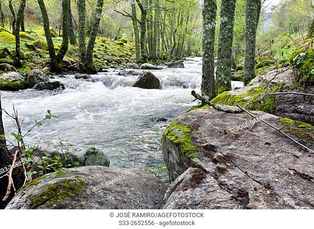 Iruelas river in the Sierra de Gredos. Avila. Castilla Leon. Spain. Europe