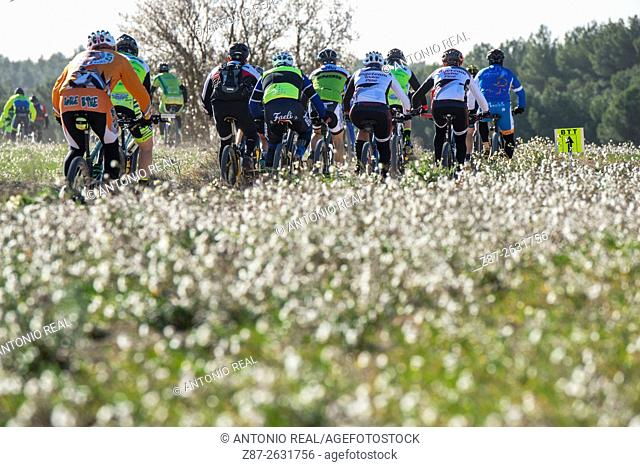 Mountain bike racing, Almansa, Albacete province, Castilla-La Mancha, Spain