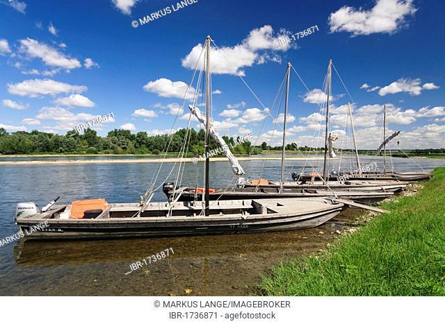Boats on the Loire River, near Chaumont sur Loire, department of Loire et Cher, Centre region, France, Europe