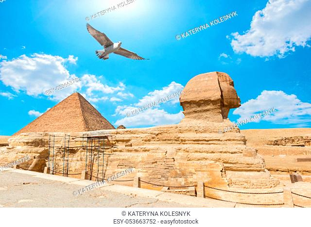 Bird over Pyramid and Sphinx in the desert of Giza, Egypt