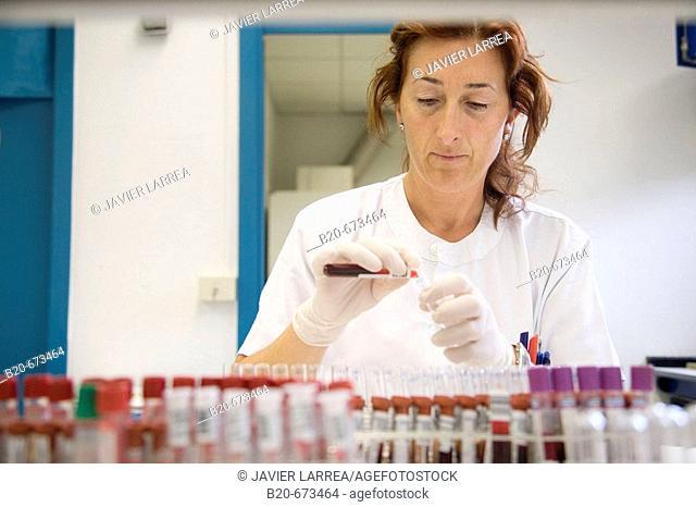 Blood serum, Laboratory of Diagnosis, Departamento de Producción y Sanidad Animal, Neiker Tecnalia, Instituto de Investigación y Desarrollo Agrario, Ganadero
