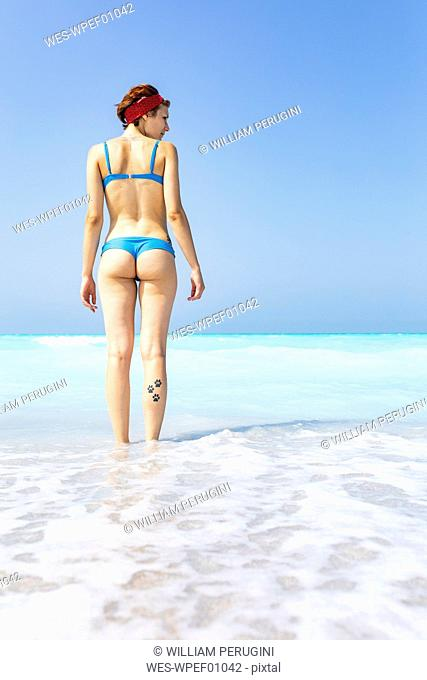 Young woman standing at the sea, looking at distance, rear view