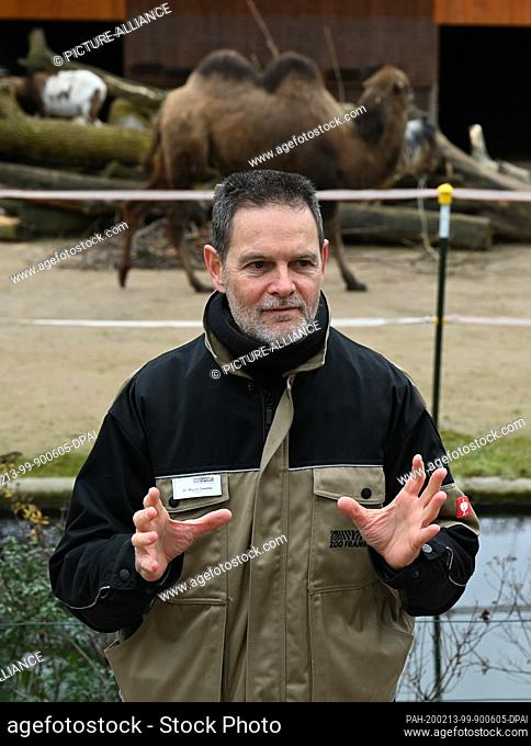 """13 February 2020, Hessen, Frankfurt/Main: Zoo director Miguel Casares speaks at the presentation of the almost one year old bactrian mare """"""""Arya"""""""" (in the..."""
