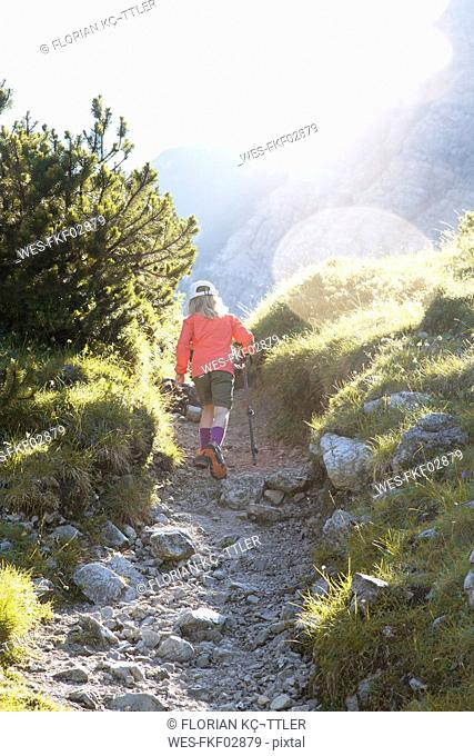 Austria, South Tyrol, young girl hiking